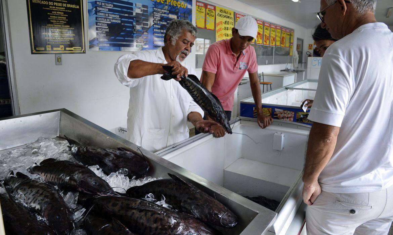 """Doença """"urina preta"""" pode estar relacionada a consumo de frutos do mar"""